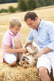 Father And Son Sitting With Dog On Straw Bales In. Harvested Field Smiling Stock Image