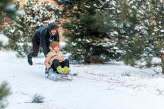 Father and son sledding. Snowy winter in the forest father and son sledding Royalty Free Stock Image
