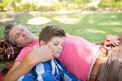 Father and son sleeping on picnic blanket in park Royalty Free Stock Images