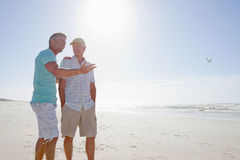 Father and son talking on sunny beach Stock Photography
