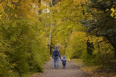 Father and son on their shoulders walk through the autumn park. Back view stock images