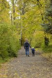 Father and son on their shoulders walk through the autumn park. Back view royalty free stock photography