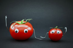 Father and son tomato Royalty Free Stock Photos