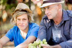 Father and son in vineyard royalty free stock images