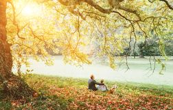 Father with son walk with beagle dog and enjoy warm autumn day stock photography