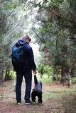 Father and son walk in the coniferous forest among the pines. The concept of family values, hike stock image