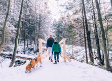 Father and son walk with dog in snow forest Stock Photos