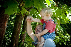 Father and son on a walk in the woods Stock Photo