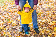 Father and Son walking. Baby taking first steps with father help in autumn garden in the city Royalty Free Stock Photography