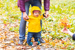 Father and Son walking. Baby taking first steps with father help in autumn garden in the city Royalty Free Stock Photo