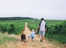 Father and son walking with dog on nature, outdoors. royalty free stock photography