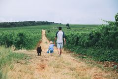 Father and son walking with dog on nature, outdoors. stock photos