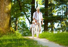Father and son walking the forest sunlit path. Happy father and son walking the forest sunlit path Royalty Free Stock Images