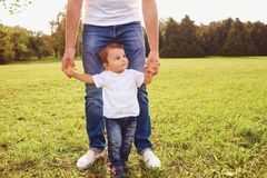 Father with son walks in the park. royalty free stock photo