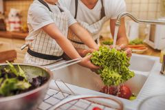 Father with son washes vegetables Royalty Free Stock Image