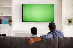 Father and son watching TV at home together, back view royalty free stock photo