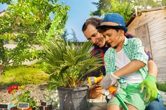 Father and son watering plants in the garden stock photo