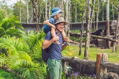 Father and son at the zoo. Spending day with family at the zoo stock photography