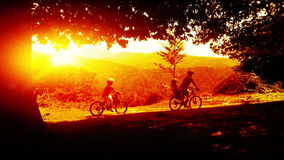 Father and sons on bicycles, mountain trail at sunset stock footage