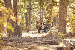 Father talking with his children in a forest Royalty Free Stock Photos