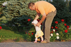 Father teaches her  little daughter to walk. Father teaches her beautiful little daughter to walk on the background of rose bushes Royalty Free Stock Photography