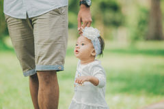 Father teaching baby to walk in the park. Portrait of a father teaching baby to walk in the park stock images