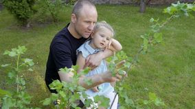Father tell daughter about plants in the garden stock video footage