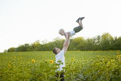 Father throws up his little son on a green sunflowers field against the sky royalty free stock images