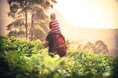 Father traveler holding child daughter on tea plantation fields looking beautiful sunset scenery on horizon during vacation concep royalty free stock photos