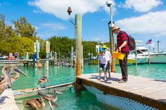 Father and two little kid boys feeding fishes and pelicans Stock Photo