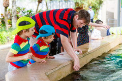 Father and two little kid boys feeding rays in a recreation area Royalty Free Stock Image