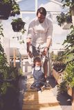 Father is walking baby in a green house stock photo