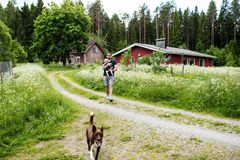 Father walking his son in a finnish cottage garden. Young father holding his son in his arms, walking in the garden of a Finnish cottage garden. Thewild flowers Stock Photos