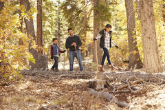 Father watching his two children walk over trees in a forest stock photo