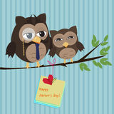 Fathers day owl. Cute illustration of happy father and kid owl Stock Photography