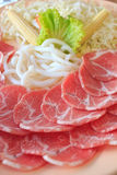 Carne de porco e udon Imagem de Stock