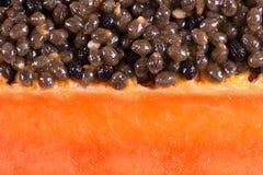 Fatia da papaia imagens de stock royalty free