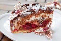 Fatia de bolo de chocolate com cerejas Imagem de Stock Royalty Free