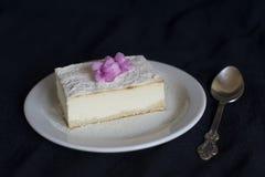 Fatia de bolo de queijo imagem de stock