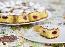 Fatia de bolo de esponja da cereja imagens de stock