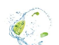 Fatia de cal suculento, de hortelã fresca e de espirrar a água fria foto de stock
