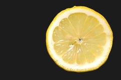 Fatia de limão imagem de stock royalty free