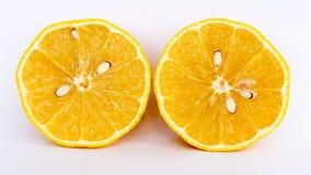 Fatia de limão no fundo branco Foto de Stock Royalty Free