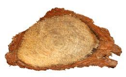 A fatia de madeira do log cutted o tronco de árvore isolado na vista branca, superior Fotografia de Stock Royalty Free