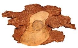 A fatia de madeira do log cutted o tronco de árvore isolado na vista branca, superior Fotos de Stock Royalty Free