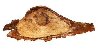 A fatia de madeira do log cutted o tronco de árvore isolado na vista branca, superior Imagem de Stock Royalty Free