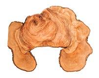 Fatia de madeira, oliveira velha Imagens de Stock