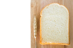 Fatia de pão Fotos de Stock