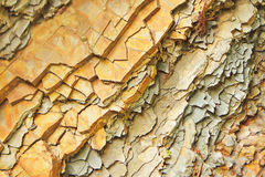 A fatia de pedra balança o fundo geological Fotos de Stock