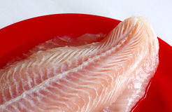Fatia de peixes Imagens de Stock